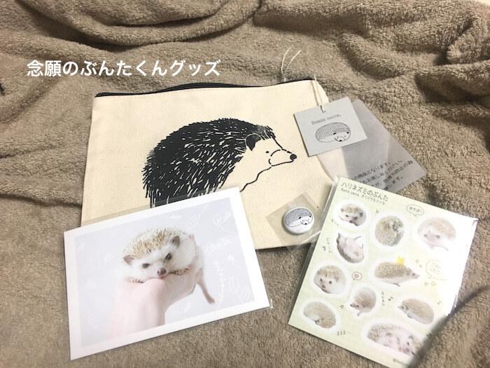 f:id:chikojirou:20170807212434j:plain