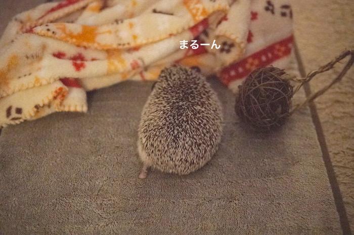 f:id:chikojirou:20170821214342j:plain