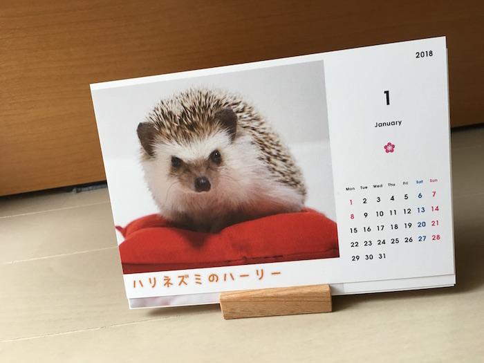 f:id:chikojirou:20171005142320j:plain