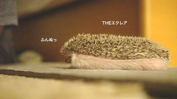f:id:chikojirou:20171121214355p:plain