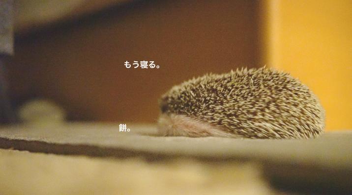 f:id:chikojirou:20171121214450p:plain