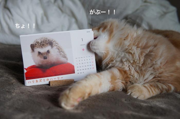 f:id:chikojirou:20180121211702j:plain