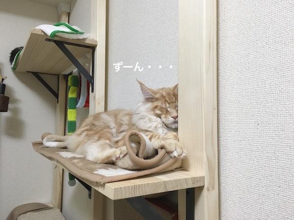 f:id:chikojirou:20180202221416j:plain