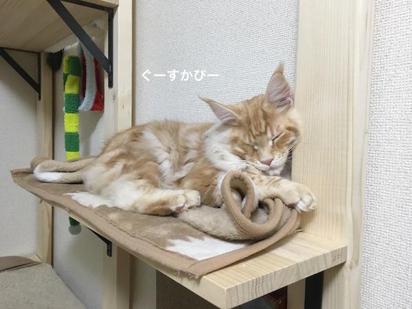 f:id:chikojirou:20180202221434j:plain