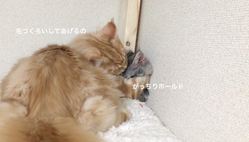 f:id:chikojirou:20180203220938p:plain