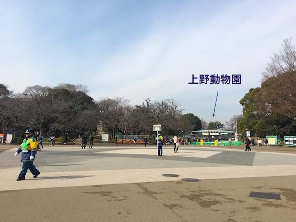 f:id:chikojirou:20180203221312j:plain