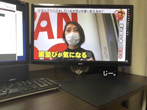 f:id:chikojirou:20180203221519j:plain
