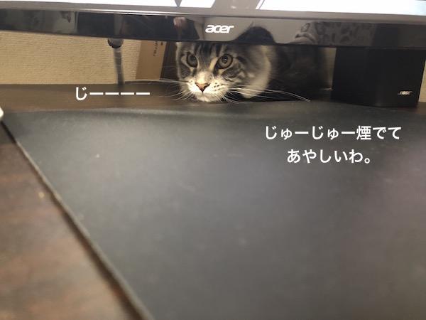 f:id:chikojirou:20180203221554j:plain