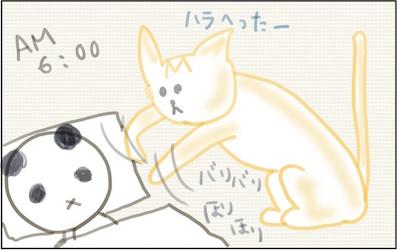 f:id:chikojirou:20180207223826j:plain