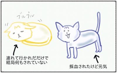 f:id:chikojirou:20180207223900j:plain