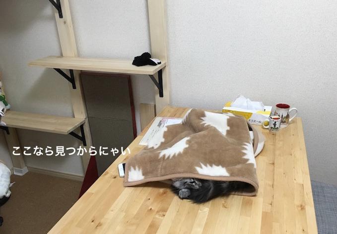 f:id:chikojirou:20180208224843j:plain