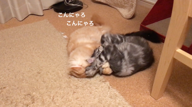 f:id:chikojirou:20180211223728p:plain
