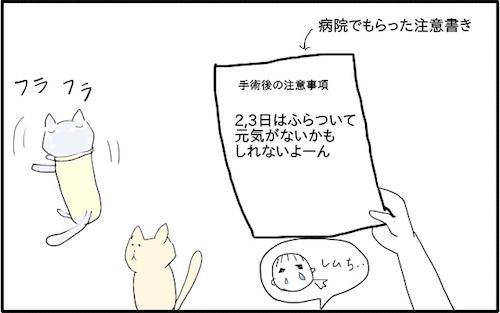 f:id:chikojirou:20180217215836j:plain