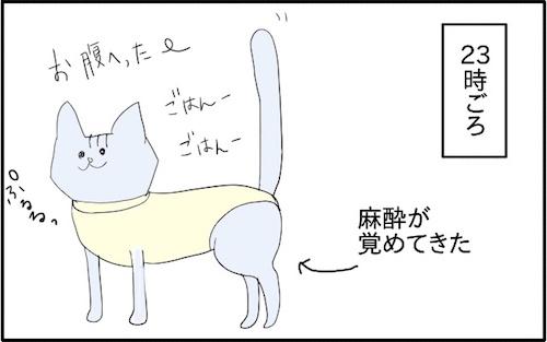 f:id:chikojirou:20180217215856j:plain