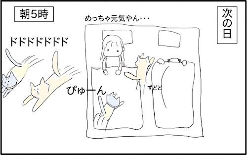 f:id:chikojirou:20180217215911j:plain