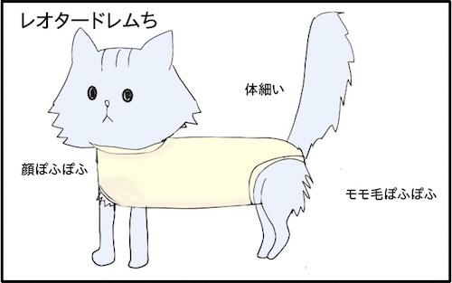 f:id:chikojirou:20180217215946j:plain