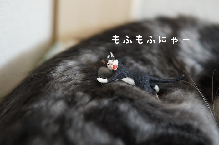 f:id:chikojirou:20180321171051j:plain