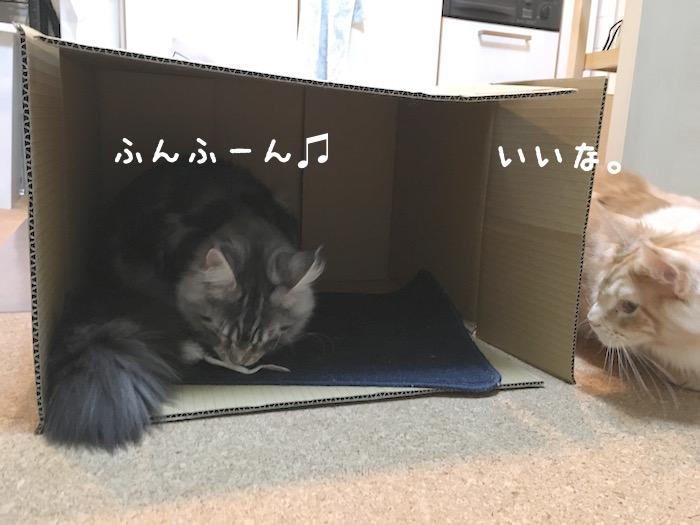 f:id:chikojirou:20180322220619j:plain