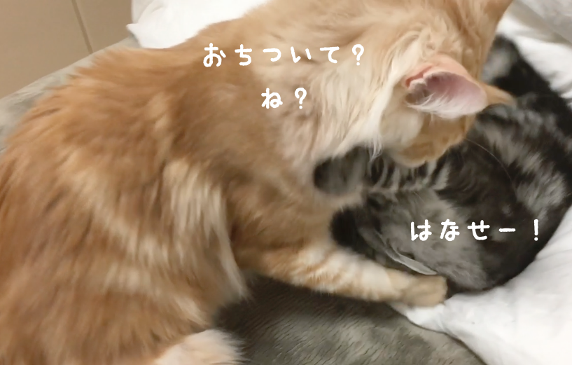 f:id:chikojirou:20180328215631p:plain