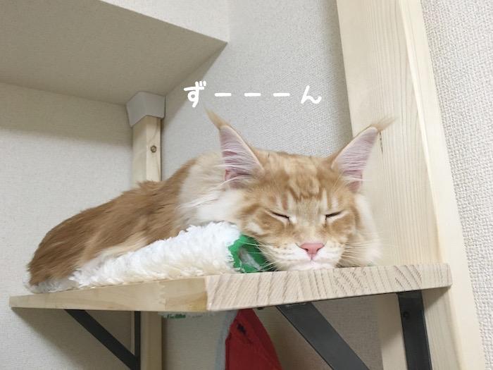 f:id:chikojirou:20180402214443j:plain