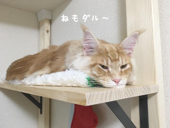 f:id:chikojirou:20180402214514j:plain