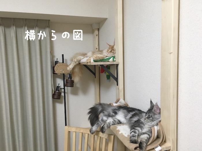 f:id:chikojirou:20180402214558j:plain