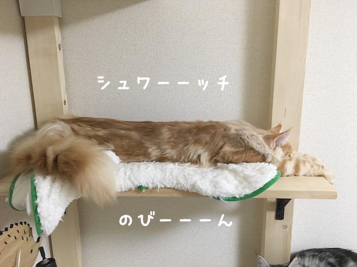 f:id:chikojirou:20180406213621j:plain