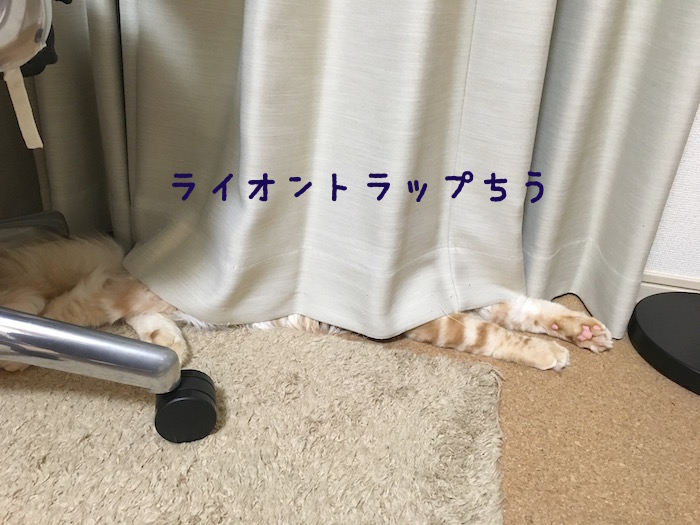 f:id:chikojirou:20180406213700j:plain