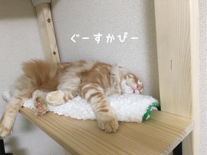 f:id:chikojirou:20180411214057j:plain