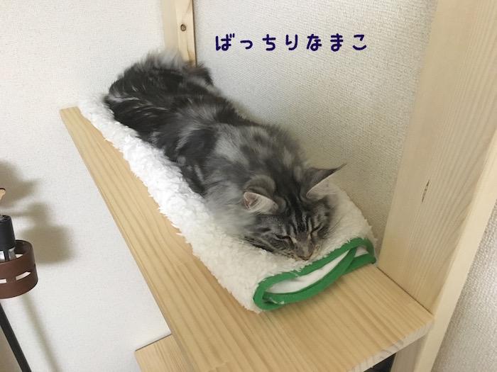 f:id:chikojirou:20180425211533j:plain