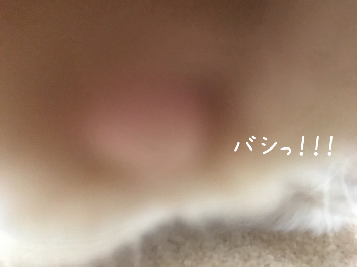 f:id:chikojirou:20180516213400j:plain