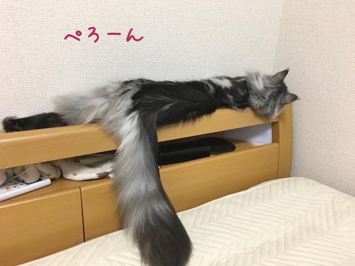 f:id:chikojirou:20180518222754j:plain