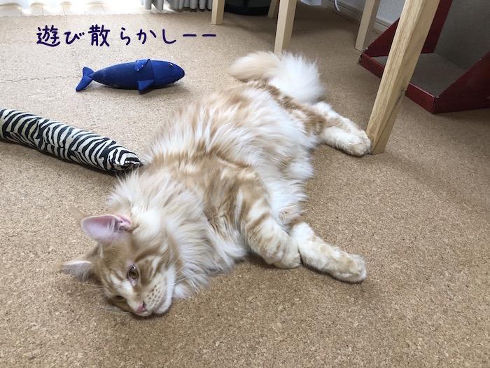 f:id:chikojirou:20180708195946j:plain