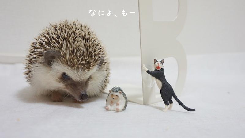 f:id:chikojirou:20180726220831j:plain
