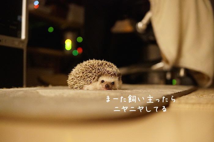 f:id:chikojirou:20180820220617j:plain