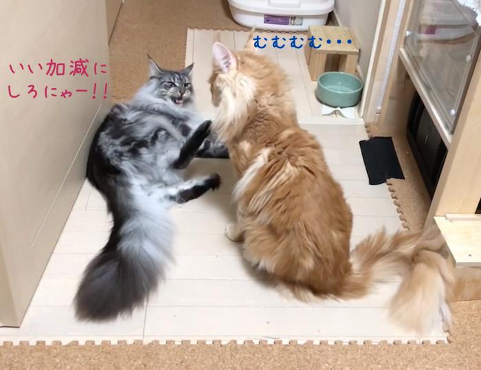 f:id:chikojirou:20180905215208p:plain