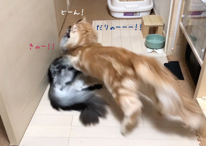 f:id:chikojirou:20180905215224p:plain