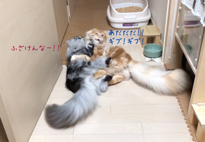 f:id:chikojirou:20180905215237p:plain