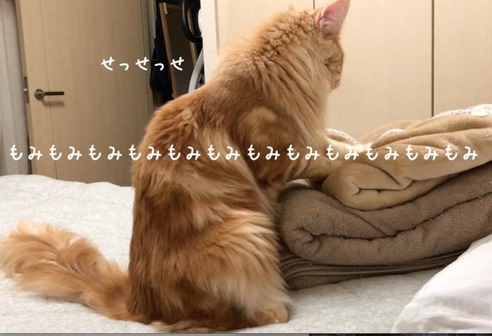 f:id:chikojirou:20181001204838p:plain