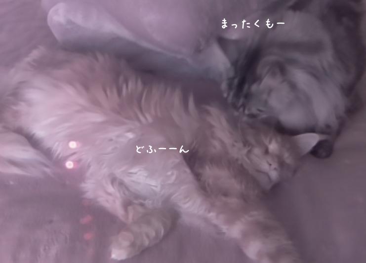 f:id:chikojirou:20190401212828p:plain