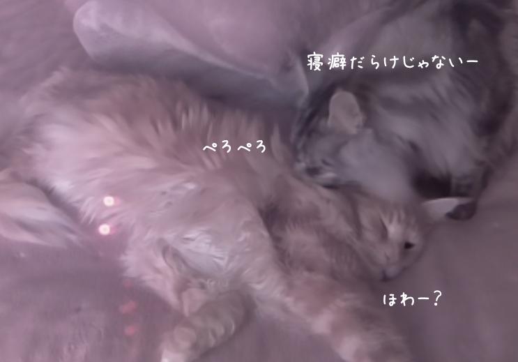 f:id:chikojirou:20190401212842p:plain