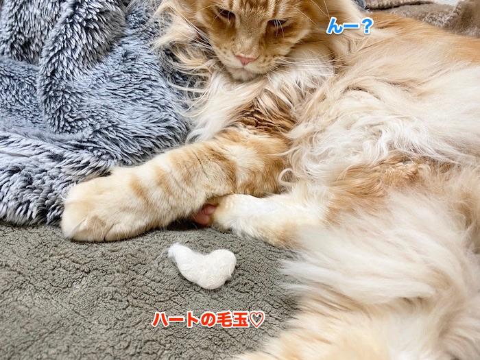 f:id:chikojirou:20200214211209j:plain