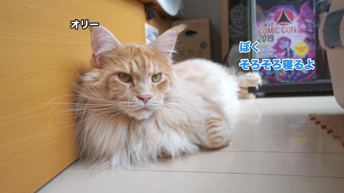f:id:chikojirou:20200711223855j:plain