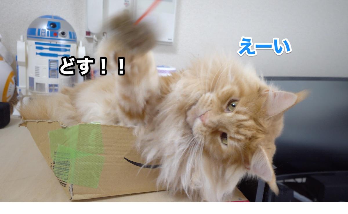 f:id:chikojirou:20200711223933j:plain