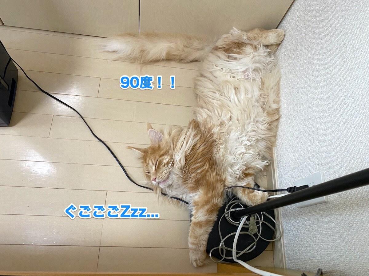 f:id:chikojirou:20200906211515j:plain