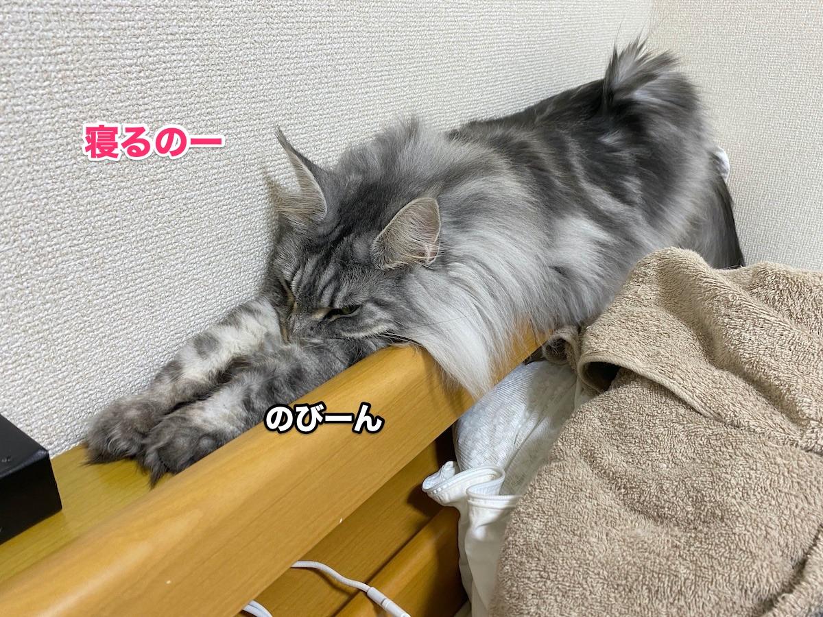 f:id:chikojirou:20200913205416j:plain