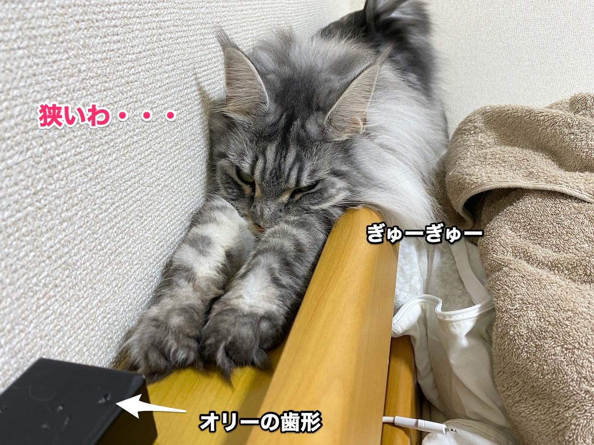 f:id:chikojirou:20200913205420j:plain