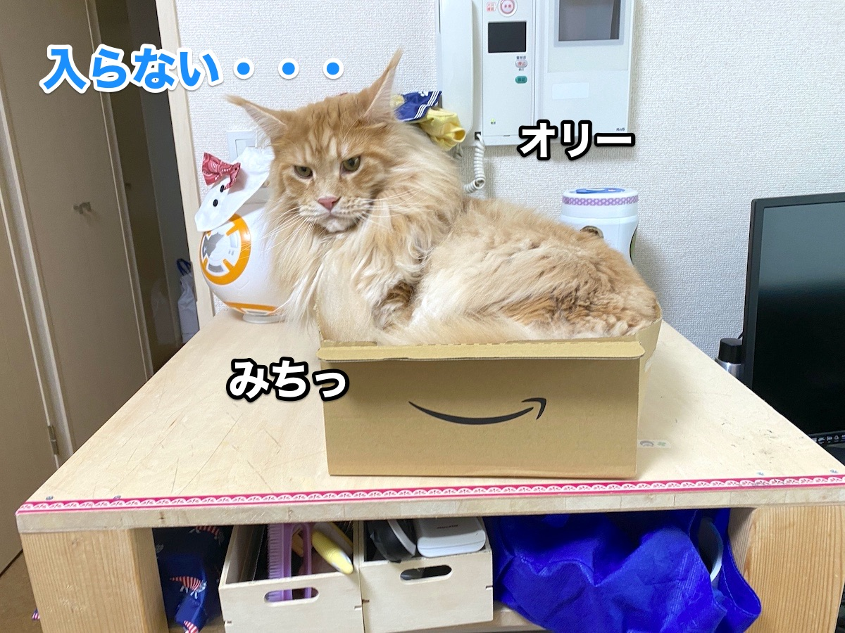 f:id:chikojirou:20200915211301j:plain