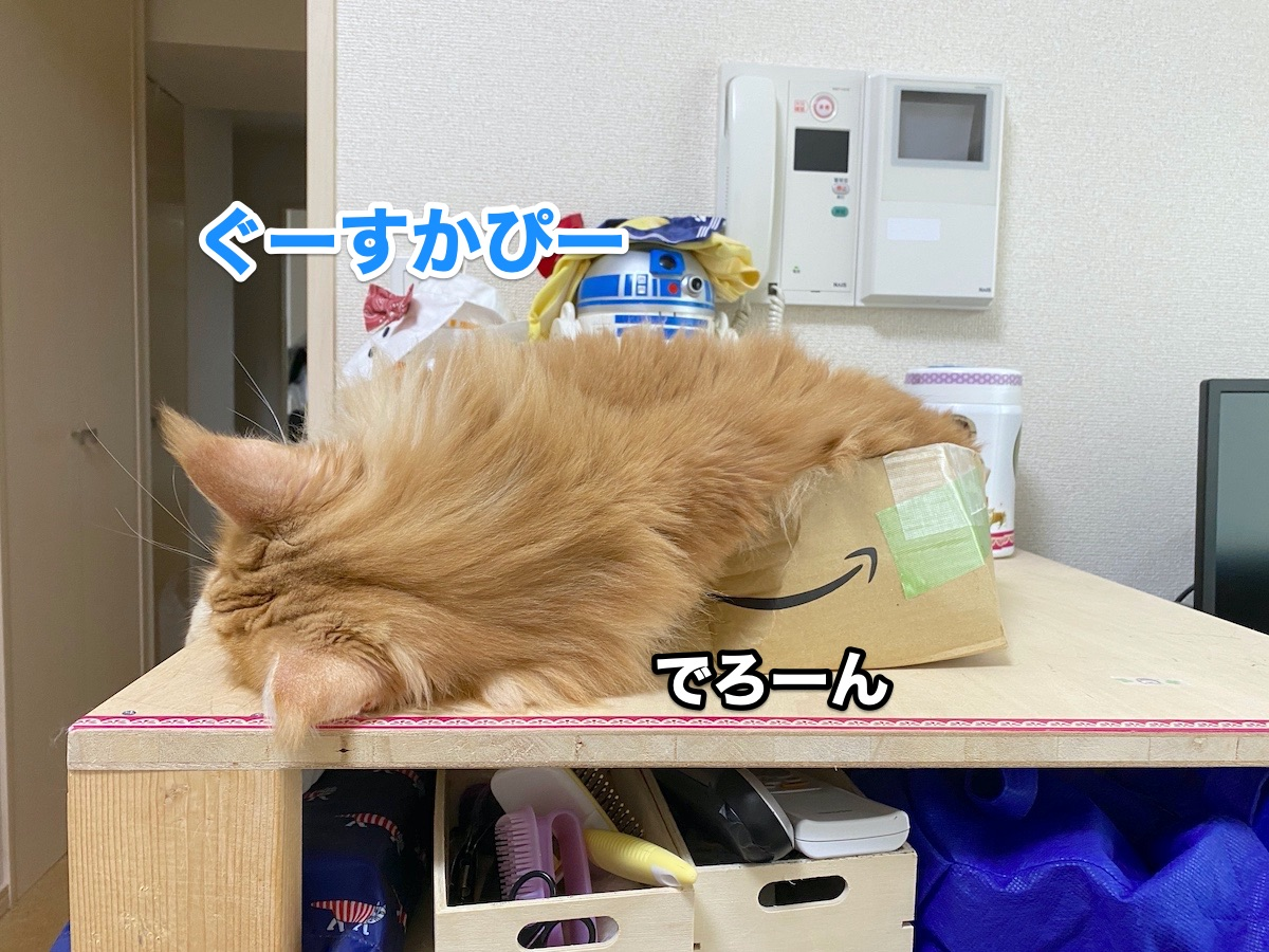 f:id:chikojirou:20200915211324j:plain