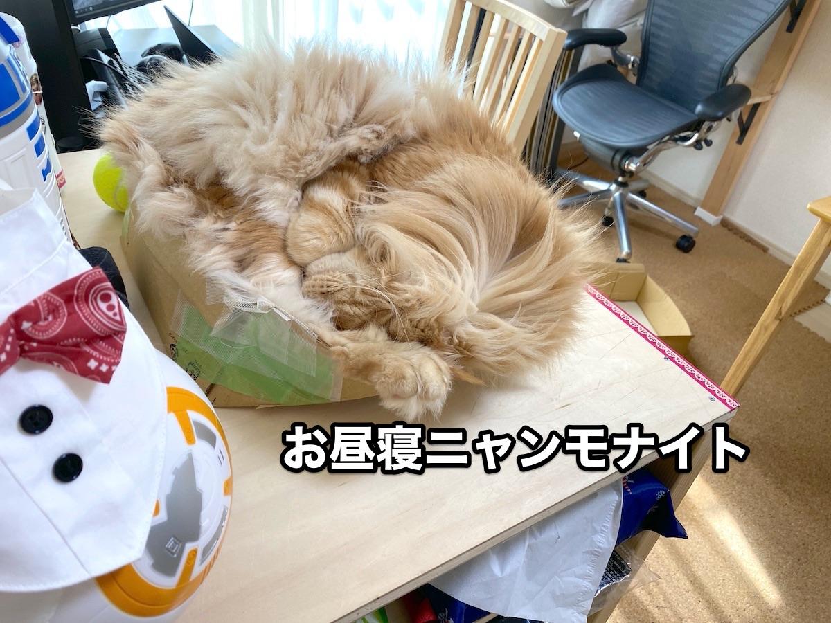 f:id:chikojirou:20200915211328j:plain